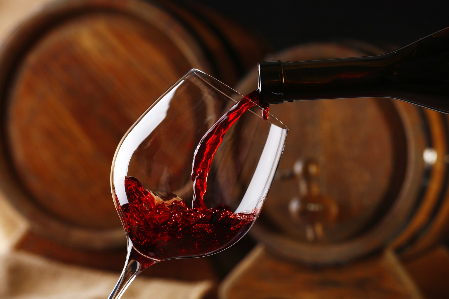 vino rolfi 16 progetti