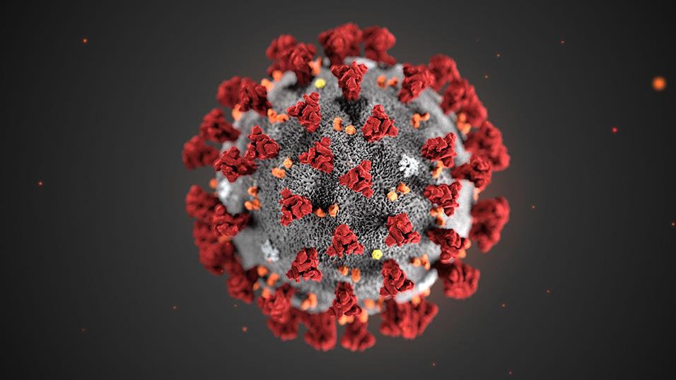 coronavirus treni