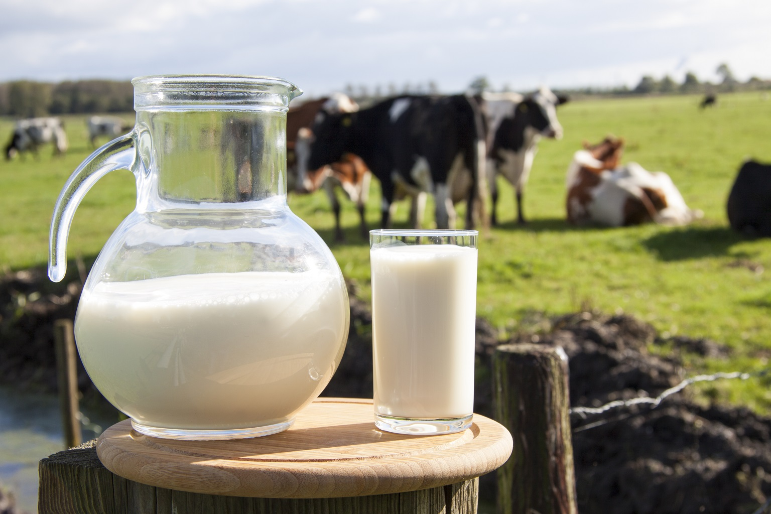 coronavirus latte