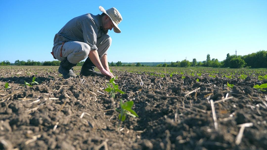 agricoltura minimo deflusso