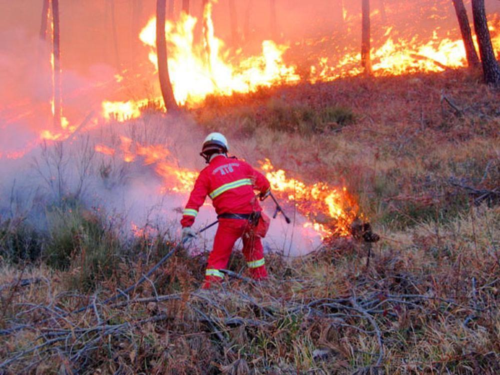 incendi boschivi stagione invernale