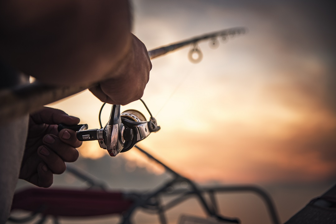bacini pesca
