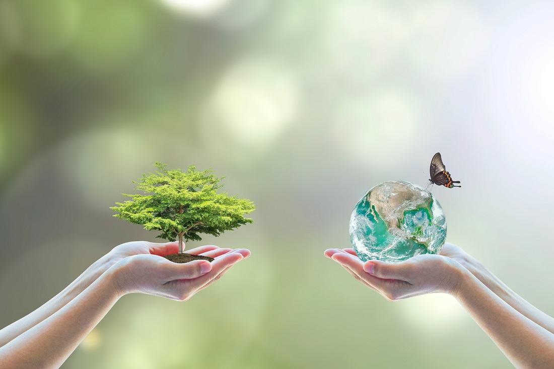 Giornata mondiale biodiversità sostenibilità