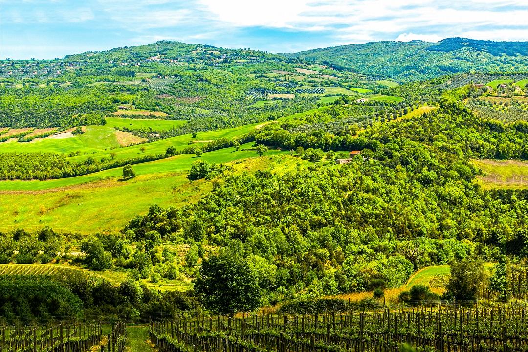 misure forestali comunità montane