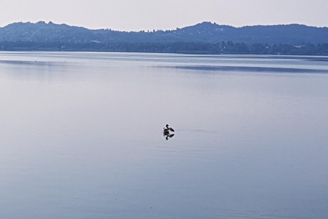 lago varese impianto ipolimnico