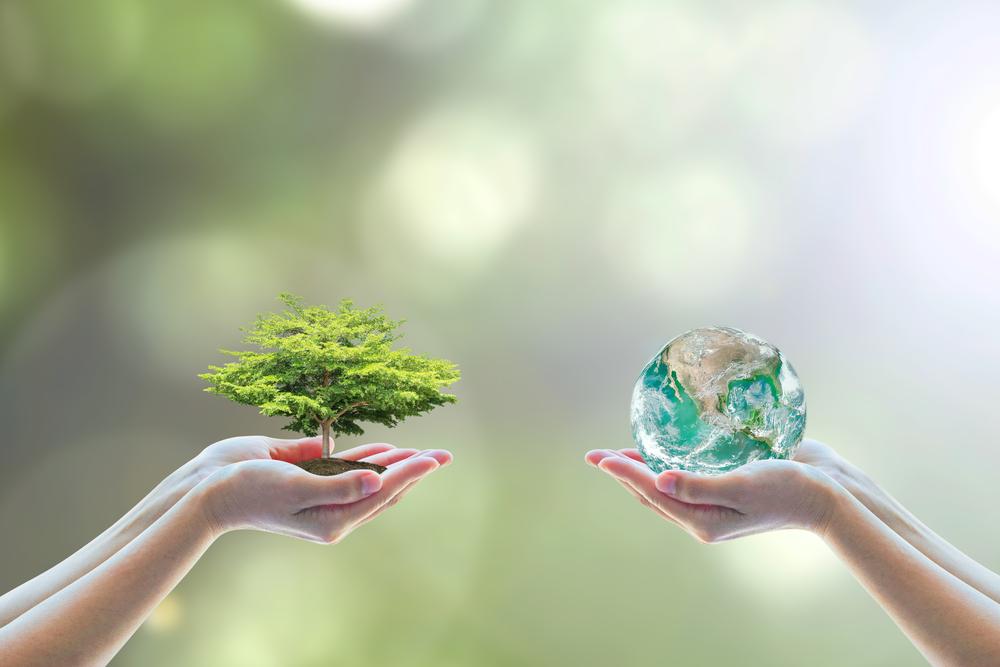 pacchetto interventi biodiversità