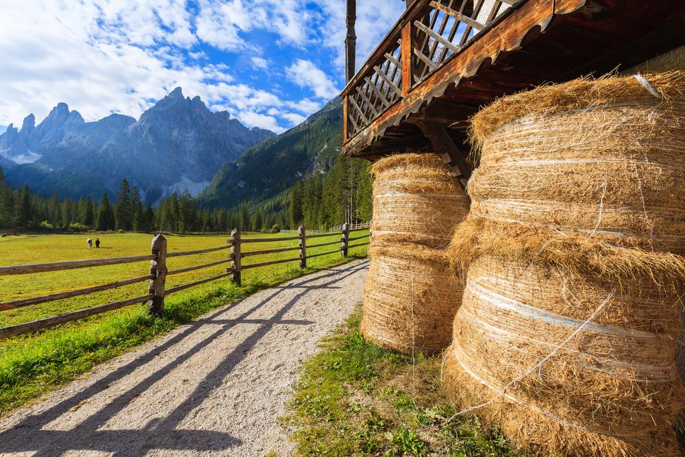 Agricoltura Comunita montane