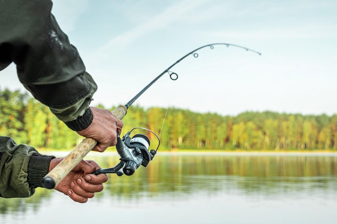Pesca Rolfi
