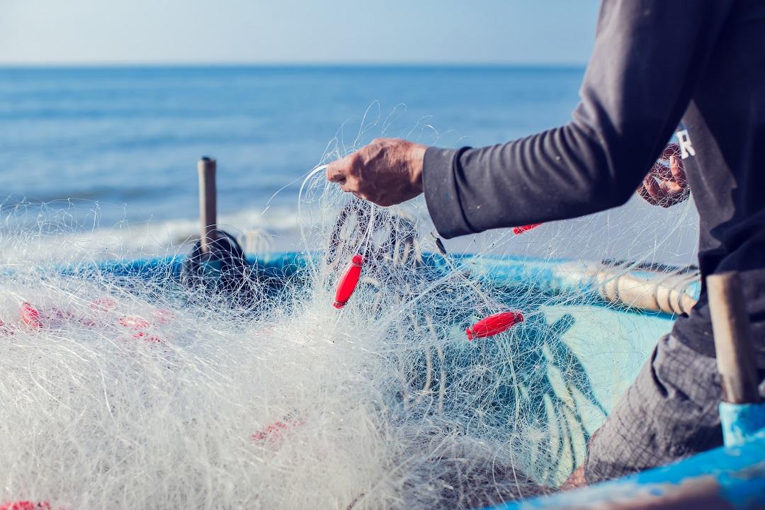 ristori pescatori professionisti