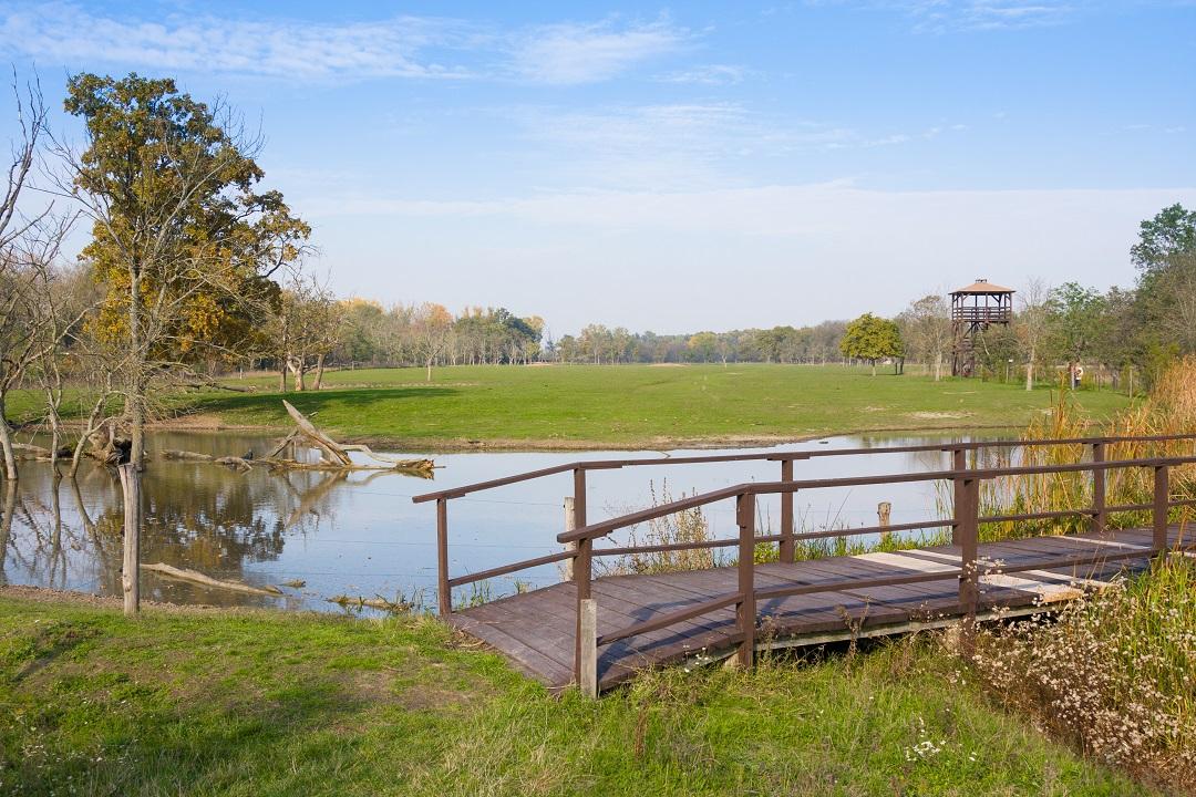 Valutazione incidenza siti natura, semplificata da Regione Lombardia