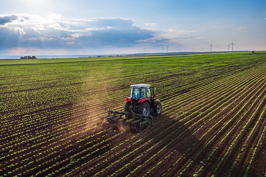 fanghi industriali agricoltura