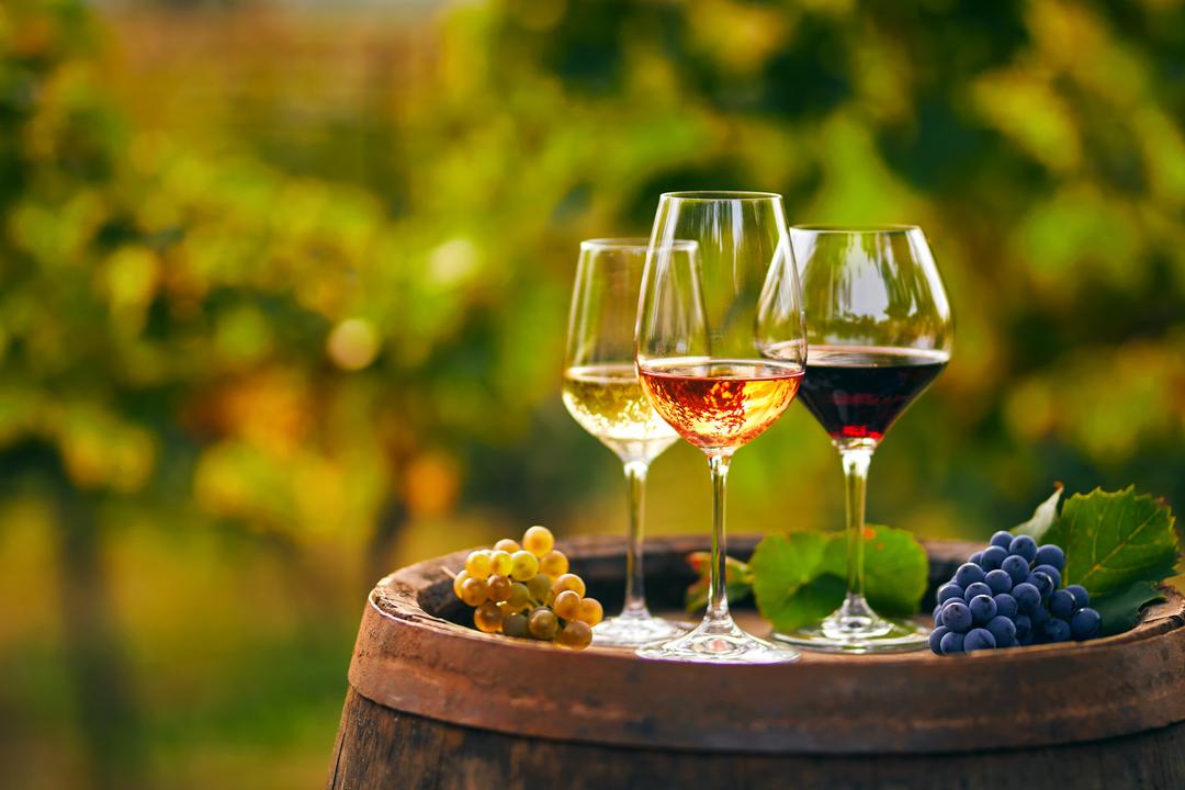 Franciacorta vino