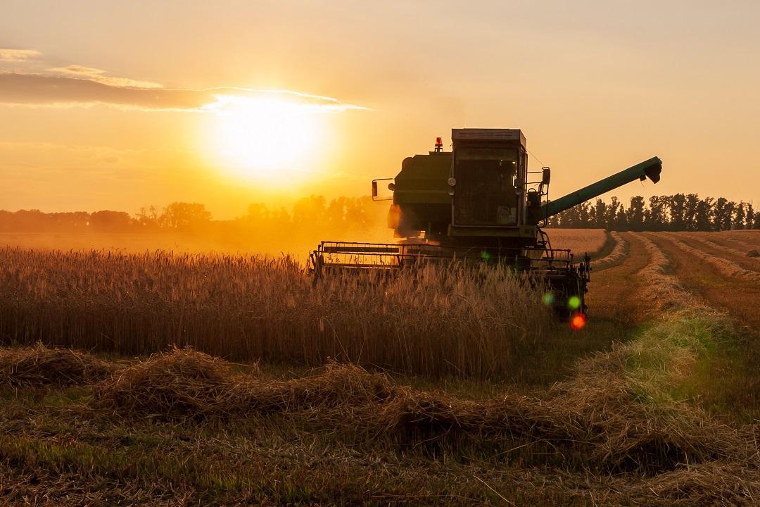 fondi feasr agricoltura