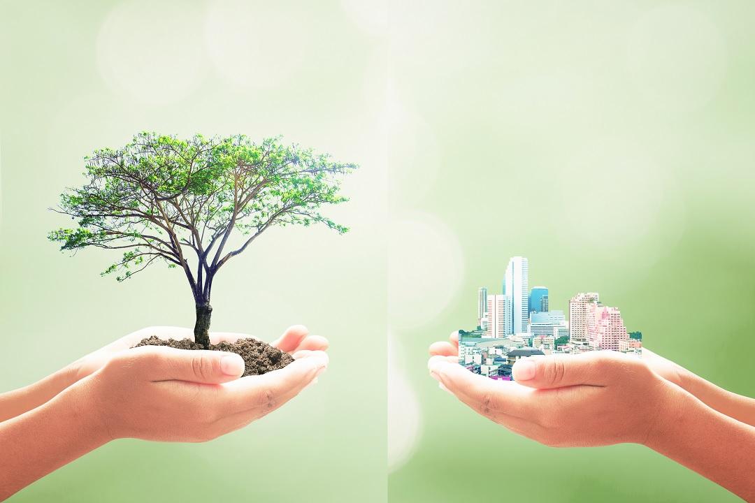 Sostenibilità per orientare politiche